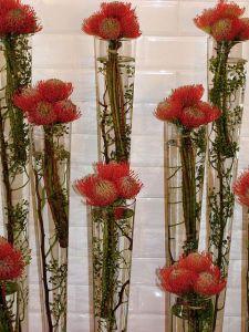 Pincushions confetti