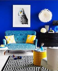 Cobalt Blue wall living opening image
