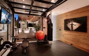 garage door gym
