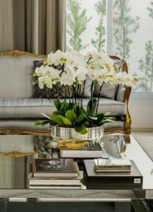 Bountiful Orchid