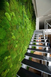 Living Moss Wall Staircase