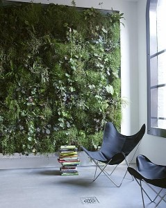 Living Wall Interior
