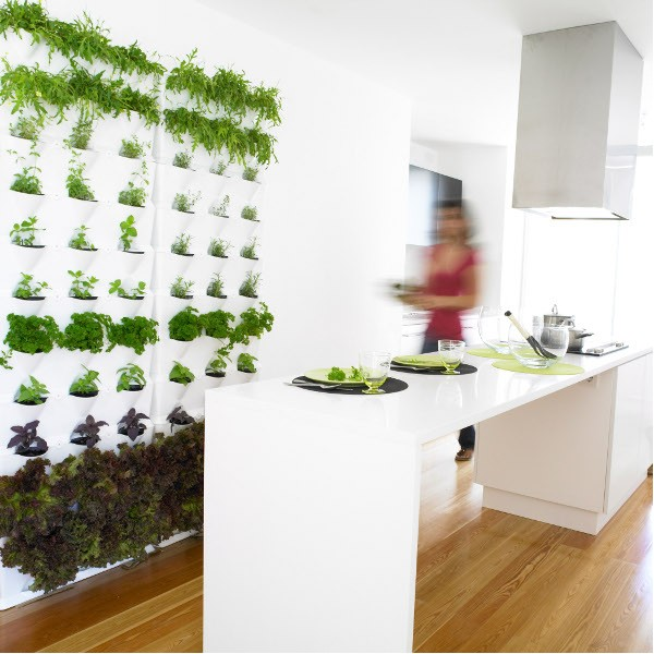 Living Walls-The Indoor Vertical Garden   What\'s Hot by JIGSAW ...