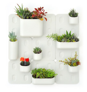 Urbio magnetic garden